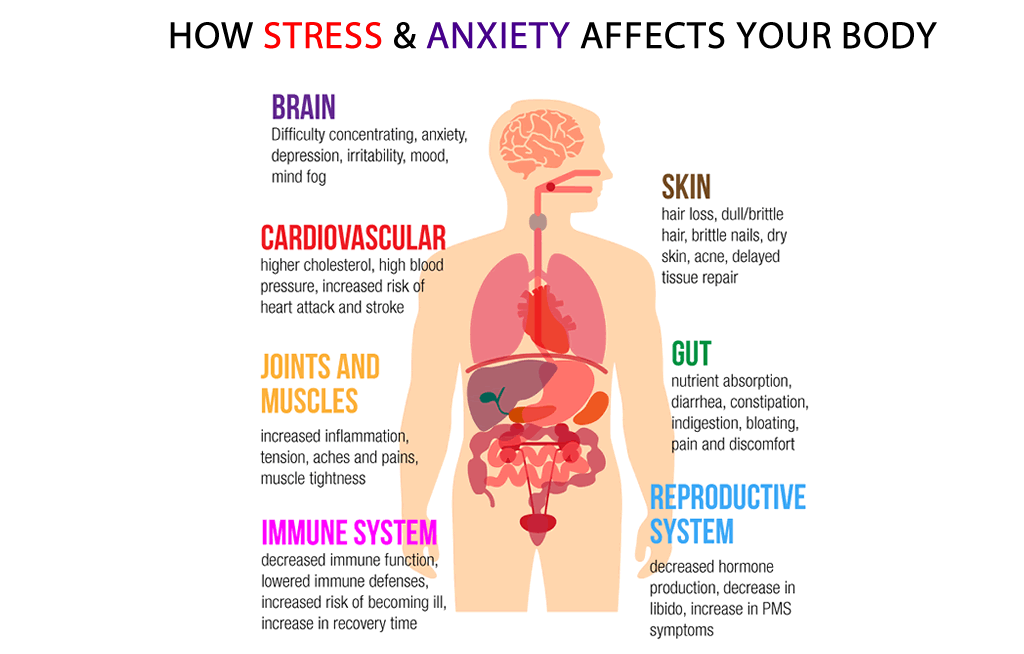 how stress and anxiety affects your body